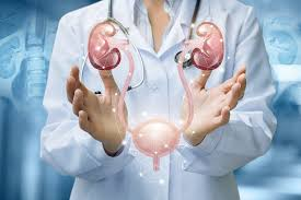 Z泌尿科的Coral Springs泌尿科醫師獲得久負盛名的獎項